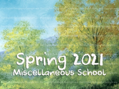 Spring 2021 Miscellaneous School