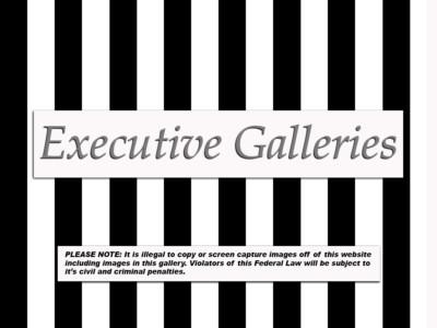 Executive Gallery